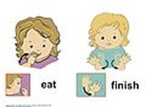 Baby Sign Language?
