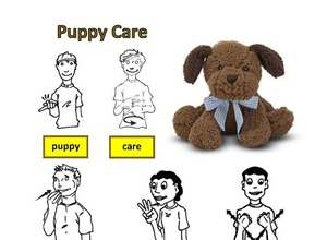 Social Emotional Puppy Care Kit