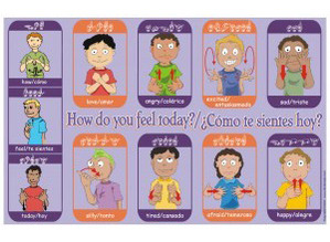 BSL Feelings & Emotions Flashcards (Let's Sign)  |Sign Language Signs For Emotions