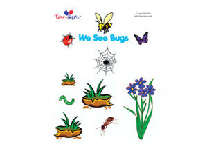 We See Bugs Sign Language Story